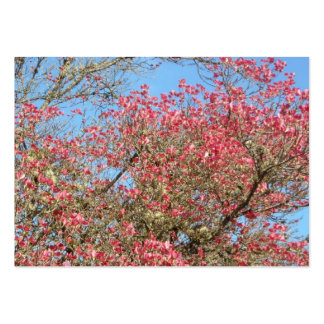 Pink Dogwood Blooms Large Business Cards (Pack Of 100)