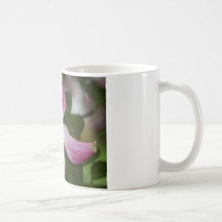 Pink Dogwood Blossoms Macro Coffee Mug