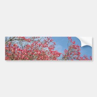 Pink Dogwood Bumper Stickers