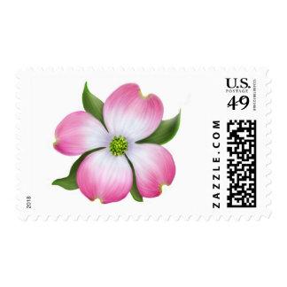 Pink Dogwood Flower Stamp