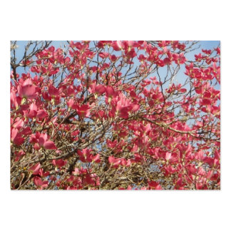 Pink Dogwood in Bloom Large Business Cards (Pack Of 100)