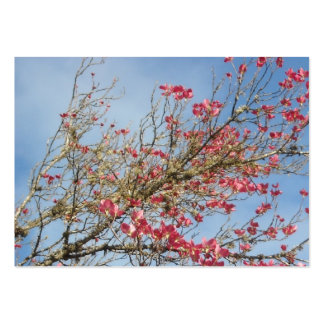 Pink Dogwood Tree in Bloom 6 Large Business Card