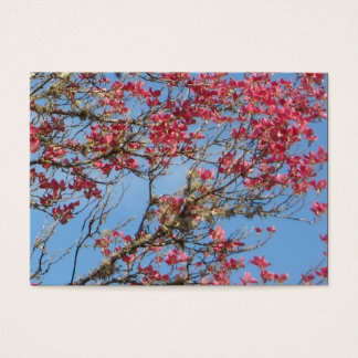 Pink Dogwood Tree in Bloom Business Card