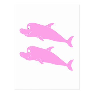 Pink Dolphins. Postcard