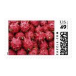 Pink Dragonfruit stacked together Stamps