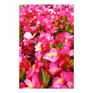 Pink_Droplets_Of_Spring,_ Stationery