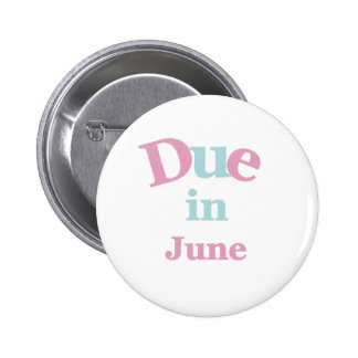 Pink Due in June Pins