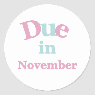 Pink Due in November Classic Round Sticker