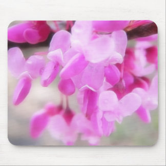 Pink Eastern Redbud Blooms Mouse Pad