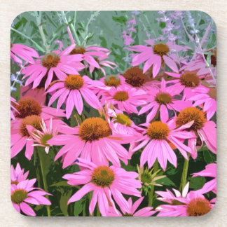 Pink echinacea abstract floral design coaster