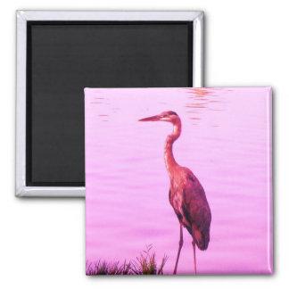 Pink Egret Heron Magnets