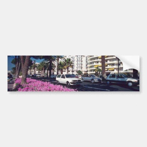 Pink Elegant Boulevard de Croisette, Cannes flower Car Bumper Sticker