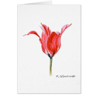Pink Elegant Tulip Greeting Card