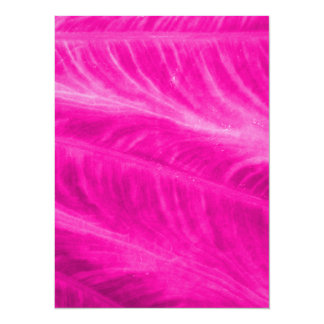 Pink Elephant Ear Close Up Card