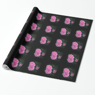 Pink English Roses Wrapping Paper By Stan