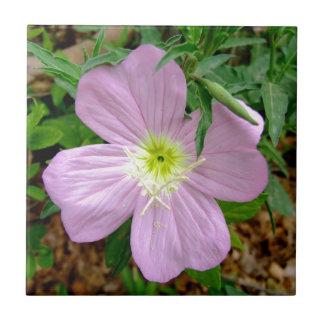 Pink evening primrose wild flower ceramic tile