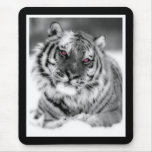 Pink Eyed Tiger Mouse Pad