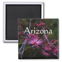 pink fairy duster magnet, Arizona Magnet