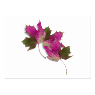 Pink Fall Leaves Business Cards