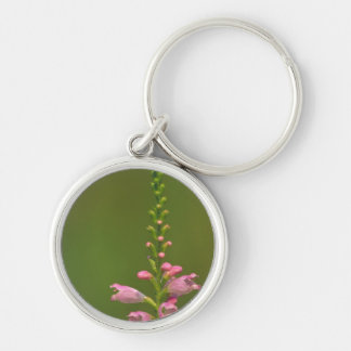 Pink False Dragonhead Flower Key Chain