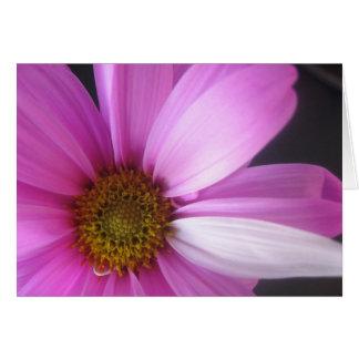 Pink Fantasy - Notecard