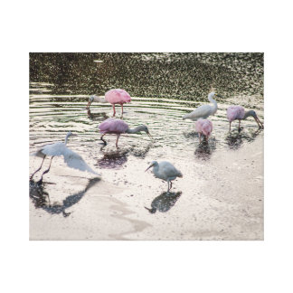Pink Feathered Affair Canvas Print