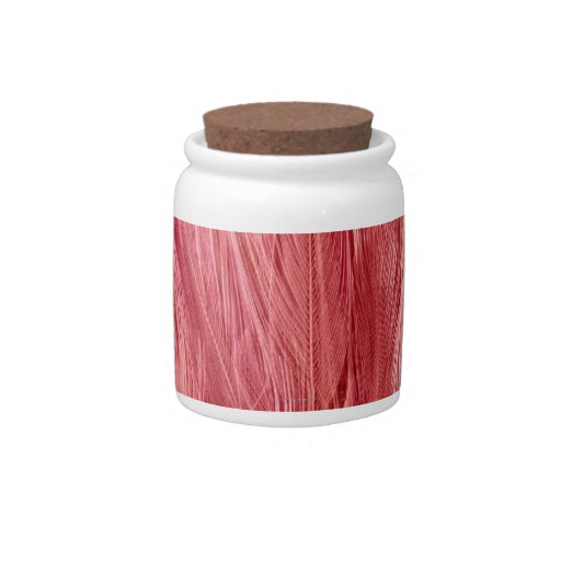 Pink Feathers Candy Jars