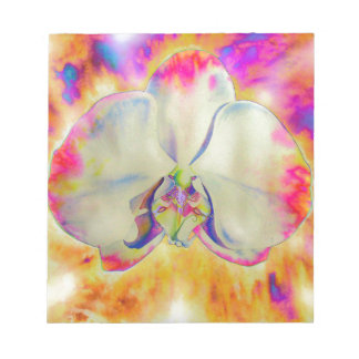 Pink fire orchid notepad