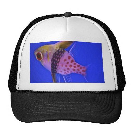 Pink Fish Trucker Hats