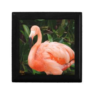 "Pink Flamingo 5"" Gift Box"