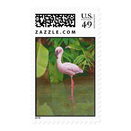 Pink Flamingo Bird Stamps