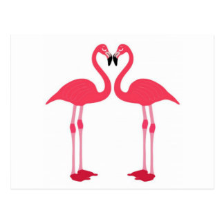 Pink flamingo-birds-love-heart postcard