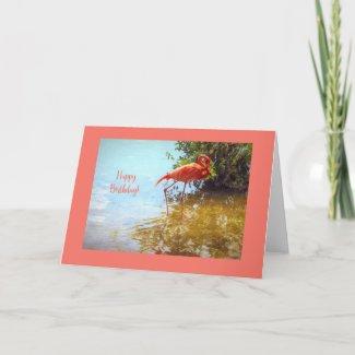 Pink Flamingo Birthday Card