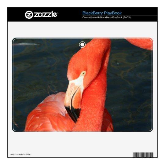 Pink Flamingo BlackBerry PlayBook Skin