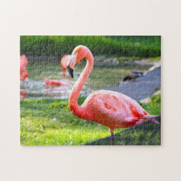 USA Themed Pink Flamingo California. Jigsaw Puzzle