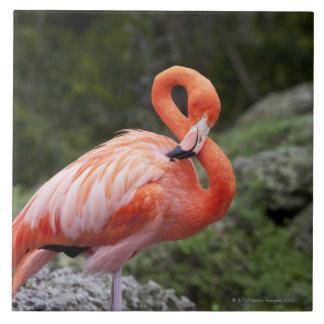 Pink Flamingo Ceramic Tile