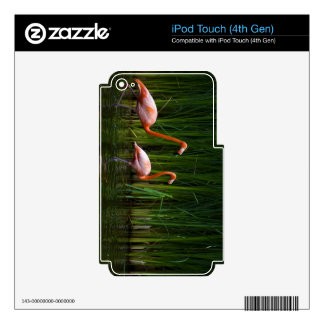 PINK FLAMINGO DECAL FOR iPod TOUCH 4G
