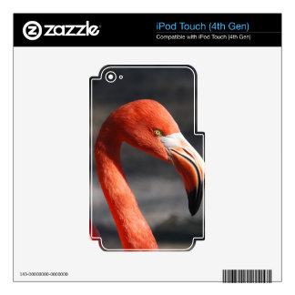 Pink Flamingo Decals For iPod Touch 4G