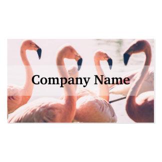 Pink Flamingo Flock, Bird Photography Business Card Templates