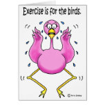 Pink Flamingo Funny Exercise is For the Birds Greeting Cards