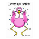 Pink Flamingo Funny Exercise is For the Birds Post Card