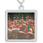 Pink Flamingo group, lots of flamingoes picture! Custom Jewelry