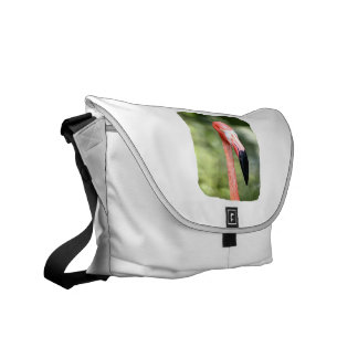 Pink flamingo head photograph green background messenger bag