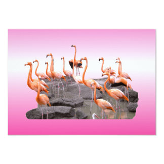 Pink Flamingo Invitation