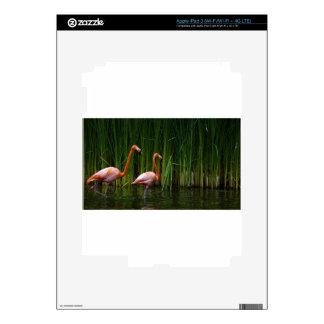 PINK FLAMINGO iPad 3 SKIN