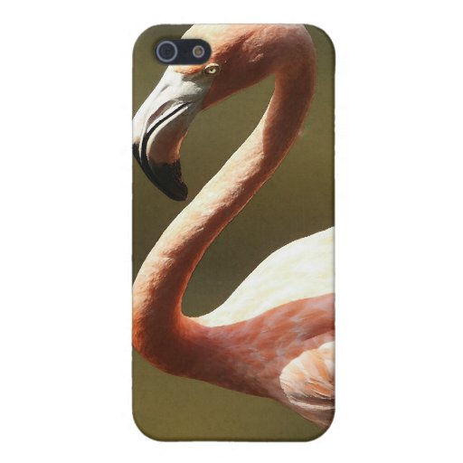 Pink Flamingo Iphone iPhone 5/5S Cases