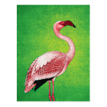 Pink Flamingo on Retro Green Pattern Postcard