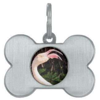 Pink Flamingo Pet Tag