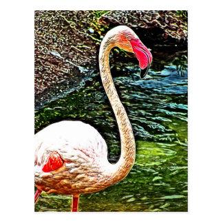 Pink Flamingo Photo Painting Postcard