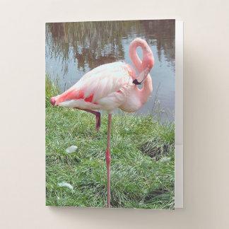 Pink Flamingo Pocket Folder